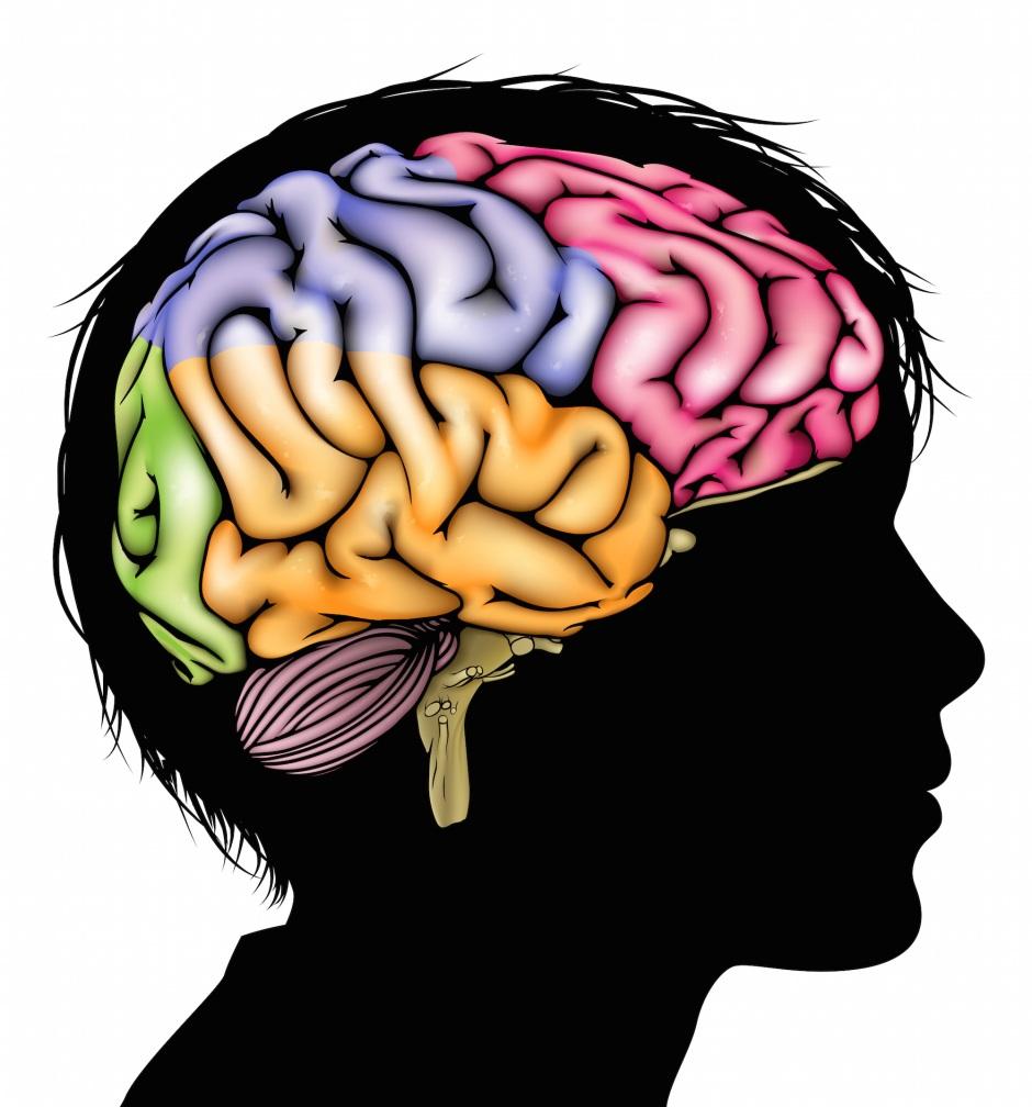 Child's brain PTSD shutterstock_253443796